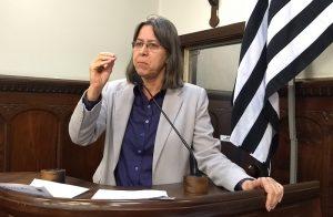 Vereadora de Bauru-SP pede explicações sobre arquivos perdidos nos servidores da prefeitura