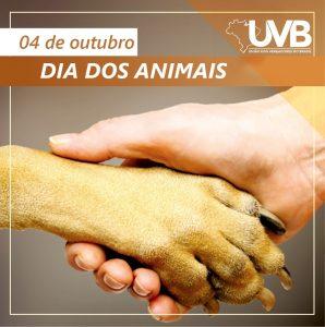 Dia dos Animais é celebrado anualmente em 4 de outubro no Brasil.