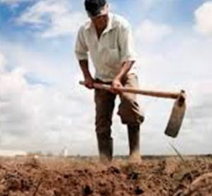 Comissão aprova MP do Agro