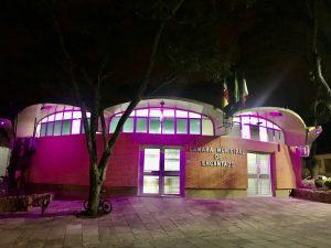 Legislativo de Encantado-RS entra na campanha máscara roxa